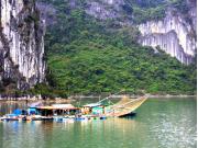 Halong_Bay (2)