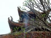 Vietnam_Village_Discovery (6)