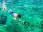 Phi Phi Island_274722560