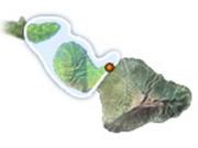 West Maui & Molokai Flight