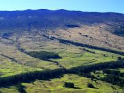 Haleakala Highway 02