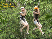 Flight of The GIbbon Chiangmai 8