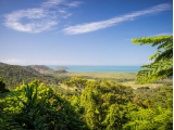Mt Alexandra Lookout