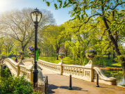 Bow Bridge, Central Park