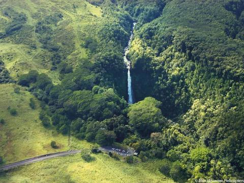 Akaka Falls State Park 01