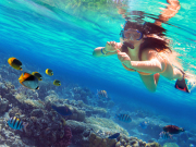 cropped Thailand_Phuket_snorkeling_shutterstock_455524831