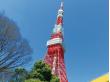 オープンバス'O Sola mio(東京タワー)