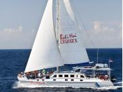 Aristocat Island Discovery Cruise (2)