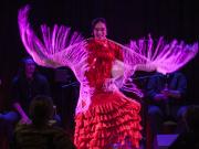 Bodega Flamenca