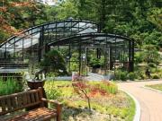 ドラマ「ラブレイン」ロケ地の樹木園