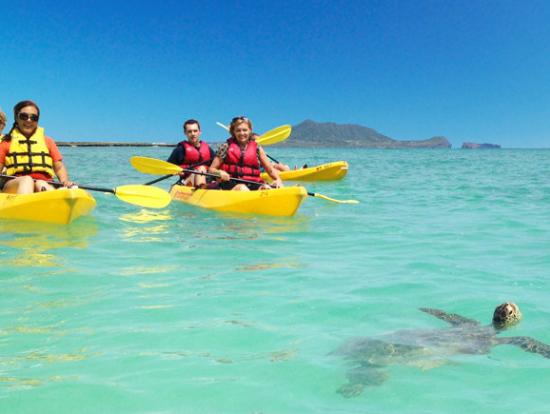 Lanikai Beach Snorkeling Tour