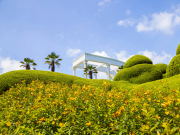 Korea_Geoje_Oedo_Botanical_Gardens_shutterstock_459149128