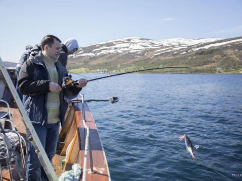 Fishing Cruise 2