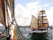 Sydney harbor tall ships boat