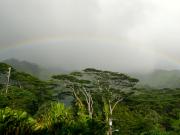 AAE_Manoa_rainbow01
