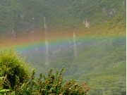AAE_Manoa_Rainbow02