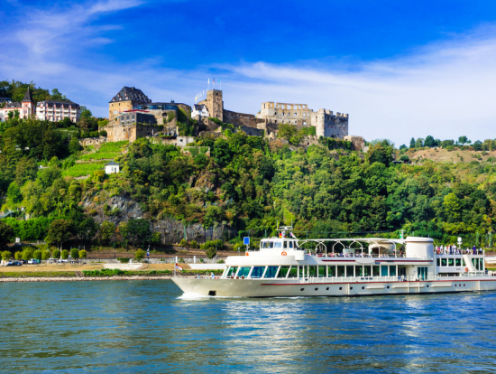 Frankfurt City Tour And Rhine Valley River Cruise With Dinner - Frankfurt river