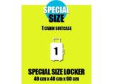 Special size locker