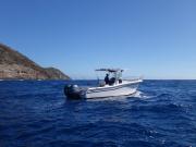 DSC05862.JPG-GW boat