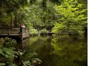 5688_Vancouver_City__Capilano_Suspension_Bridge_83e93709f4686ce1ec9ee6d77a0053fe
