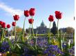 5692_Victoria__Butchart_Gardens_e94422a90c9493c2634d3d949e50b113