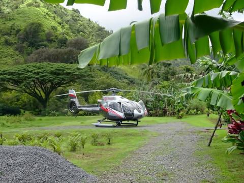 Hana Rainforest Experience 2