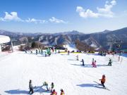 elysian ski resort experience