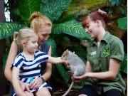 Cairns ZOOM and Wildlife Dome meet animals