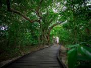 gagi-tour-green-island-cairns-46