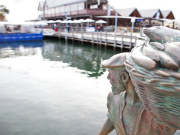 rsz_fremantle_-_twa_-_fishing_boat_harbour_02-900x500