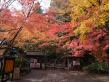 OS 石山寺