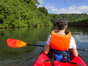 US_Hawaii_Kauai_Wailua River_Kayak_shutterstock_176842523
