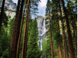 USA_California_Yosemite_National_Park_Yosemite_Waterfalls_shutterstock_128950319