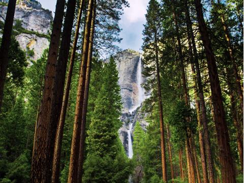 USA_California_Yosemite_National_Park_Yosemite_Waterfalls_shutterstock_128950319