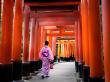 Fushimi Inari Visitor