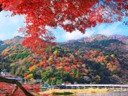 arashiyama-1