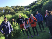 Mornington Peninsula Bushwalk