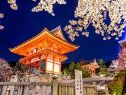 Japan_Kyoto_Kiyomizudera_Temple_Cherry_Blossom_Illuminated_shutterstock_246765673