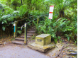 Australia_Melbourne_Dandenong_Kokoda-1000-Steps_shutterstock_608352212