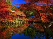 Japan_Kyoto_Daigoji_Temple_Autumn_Foriage_Garden_shutterstock_407588119