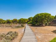Spain_Seville_Donana-Park_shutterstock_506588053