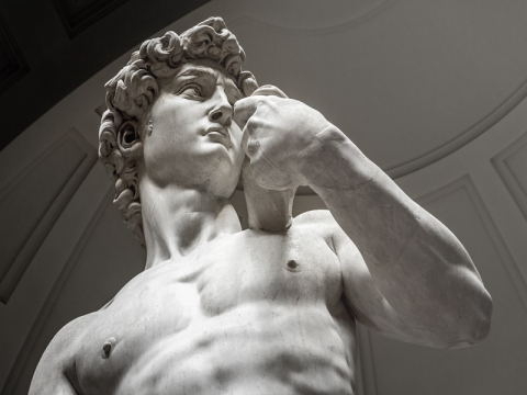 italy_florence_michelangelo-david_shutterstock_306001280