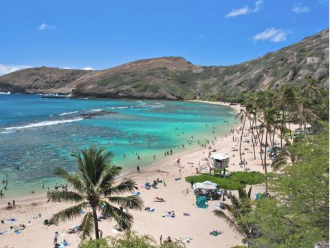 Oahu tours & activities, fun things to do in Oahu ...  Oahu tours & ac...