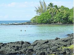 Hawaii_Big Island_Hilo Coast_shutterstock_453822877