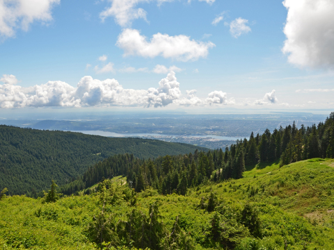 Vancouver_Grouse_Mountain_shutterstock_84389419