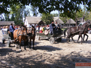 cityrama-puszta-day-tour-horse-show-18
