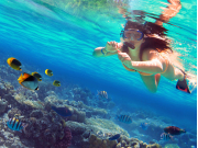 Hawaii_sea_shutterstock_455524831