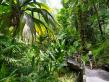 Hawaii Tropical Botanical Garden_shutterstock_648969577