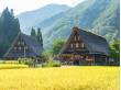 Japan_Gifu_Shirakawago_Village_shutterstock_347467151