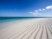 はての浜)浜さもん8